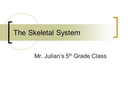 The Skeletal System Mr. Julian's 5 th Grade Class.