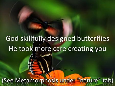 God skillfully designed butterflies He took more care creating you