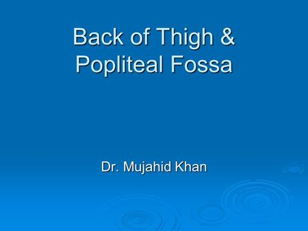Back of Thigh & Popliteal Fossa