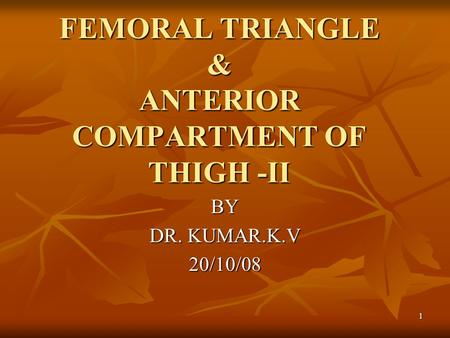FEMORAL TRIANGLE & ANTERIOR COMPARTMENT OF THIGH -II