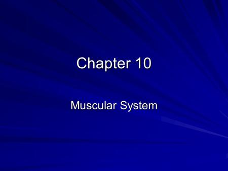 Chapter 10 Muscular System.