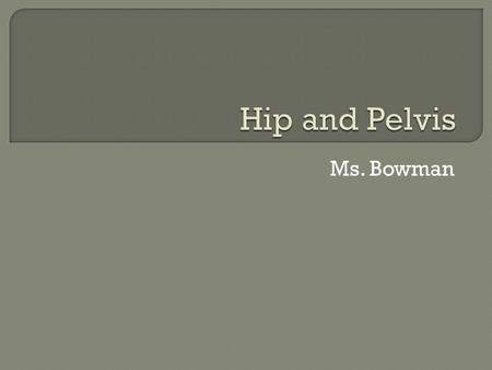 Hip and Pelvis Ms. Bowman.