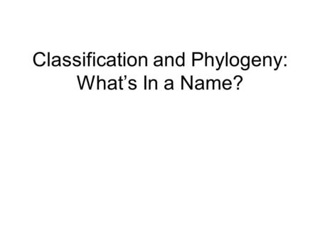 "Classification and Phylogeny: What's In a Name?. Alice in Wonderland ""What's the use of their having names,"" the Gnat said, ""if they don't answer to them?"""