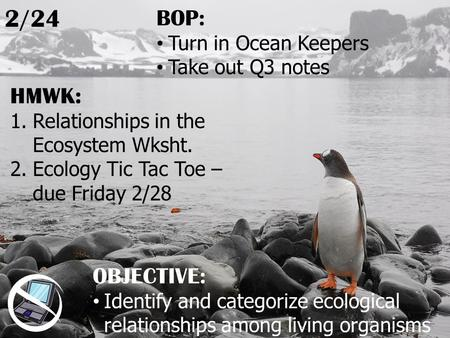 HMWK: 1.Relationships in the Ecosystem Wksht. 2.Ecology Tic Tac Toe – due Friday 2/28 2/24 OBJECTIVE: Identify and categorize ecological relationships.