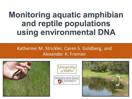 Monitoring aquatic amphibian and reptile populations using environmental DNA Katherine M. Strickler, Caren S. Goldberg, and Alexander K. Fremier.