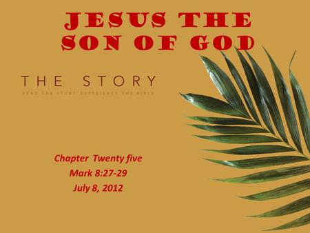 JESUS THE SON OF GOD Chapter Twenty five Mark 8:27-29 July 8, 2012.