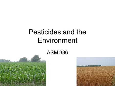 Pesticides and the Environment ASM 336. Pesticides Goal: to stop or limit pest occurrence Types: –Insecticides – kill insects –Herbicides – kill weeds.