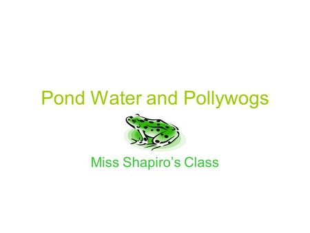Pond Water and Pollywogs Miss Shapiro's Class. We are raising frog eggs so they can turn into frogs. We have an aquarium in our classroom where the eggs.