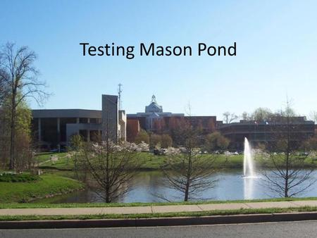Testing Mason Pond. World Water Monitoring Challenge Kit.