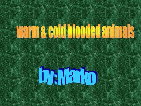 Cold-blooded animals take on the temperature of their surroundings. That means when their environment is cold their body temperature is cold. For example.
