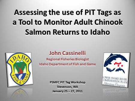 Assessing the use of PIT Tags as a Tool to Monitor Adult Chinook Salmon Returns to Idaho John Cassinelli Regional Fisheries Biologist Idaho Department.