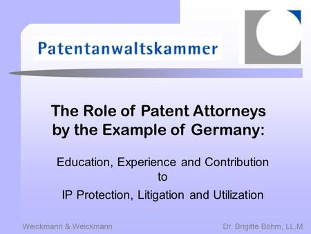 The Role of Patent Attorneys