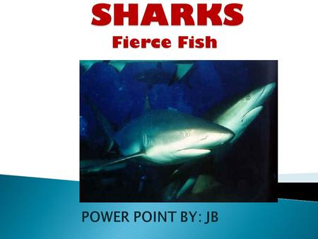 SHARKS Fierce Fish POWER POINT BY: JB.