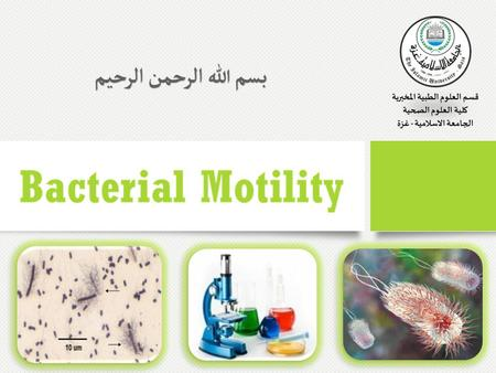 Bacterial Motility The ability of an organism to move by itself is called motility. Motility is closely linked with chemotaxis, the ability to orientate.