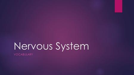 Nervous System VOCABULARY. Vocabulary  Afferent  Autonomic Nervous System  Cerebral Spinal Fluid  Conductivity  Congenital  Efferent  Equilibrium.