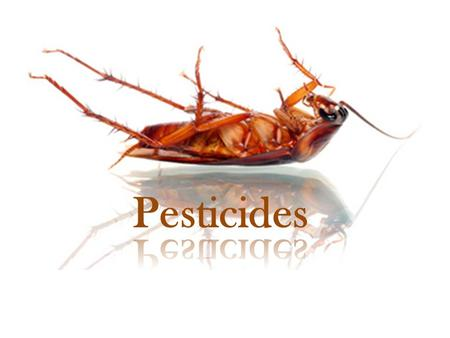 Pesticides. What are Pesticides? Pesticide: Any substance used for the purpose of destroying or controlling pests. Used in agriculture to protect crop.