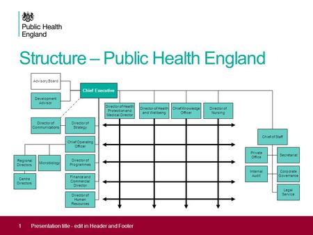 Structure – Public Health England 1Presentation title - edit in Header and Footer Chief Executive Director of Health Protection and Medical Director Director.