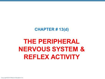 THE PERIPHERAL NERVOUS SYSTEM & REFLEX ACTIVITY