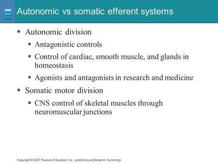 Autonomic vs somatic efferent systems