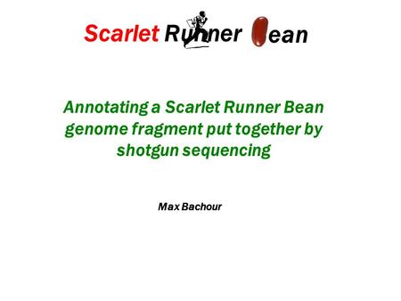 Annotating a Scarlet Runner Bean genome fragment put together by shotgun sequencing Scarlet Runner ean Max Bachour.