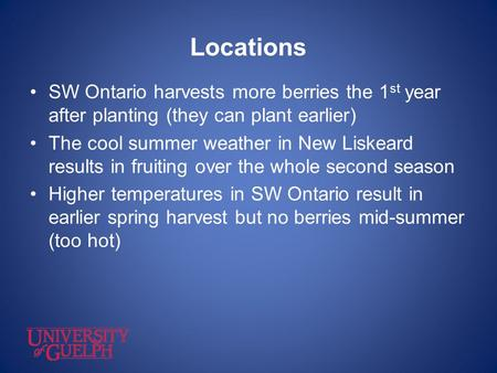Locations SW Ontario harvests more berries the 1 st year after planting (they can plant earlier) The cool summer weather in New Liskeard results in fruiting.