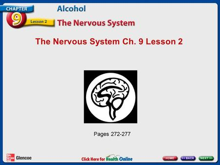The Nervous System Ch. 9 Lesson 2 Pages 272-277. The Command Center of the Body The nervous system: Is your body's control center Carries messages to.