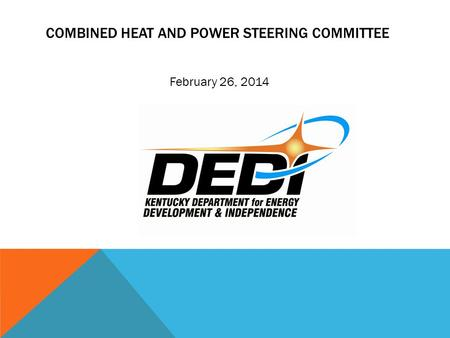 COMBINED HEAT AND POWER STEERING COMMITTEE February 26, 2014.