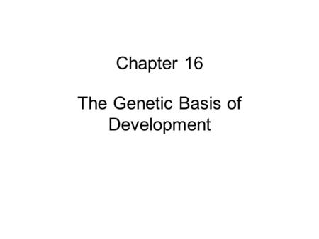 Chapter 16 The Genetic Basis of Development. Determination is a multistep process Pluripotent embryonic cells MesodermEctoderm Nerve cells Skin cells.