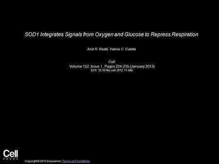 SOD1 Integrates Signals from Oxygen and Glucose to Repress Respiration Amit R. Reddi, Valeria C. Culotta Cell Volume 152, Issue 1, Pages 224-235 (January.
