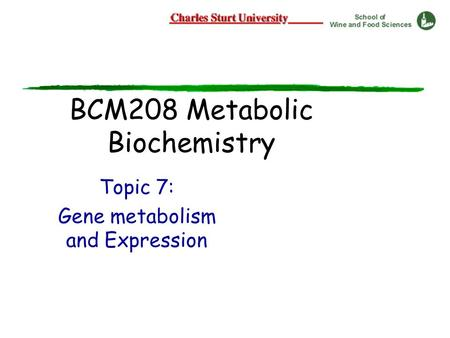 BCM208 Metabolic Biochemistry Topic 7: Gene metabolism and Expression.