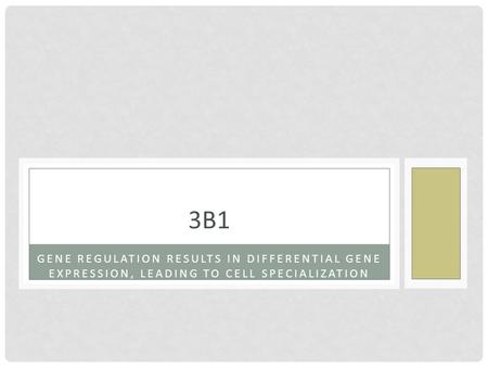 3B1 Gene regulation results in differential GENE EXPRESSION, LEADING TO CELL SPECIALIZATION.