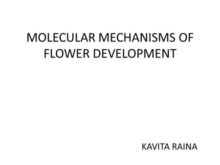 MOLECULAR MECHANISMS OF FLOWER DEVELOPMENT KAVITA RAINA.