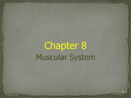Chapter 8 Muscular System.