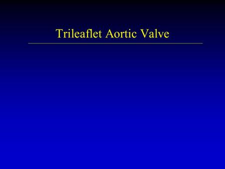 Trileaflet Aortic Valve. Management strategy for patients with chronic severe aortic regurgitation. Preoperative coronary angiography should be performed.