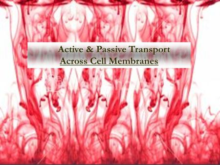 Active & Passive Transport Across Cell Membranes Active & Passive Transport Across Cell Membranes.