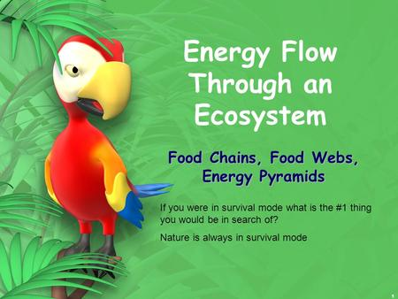 1 Energy Flow Through an Ecosystem Food Chains, Food Webs, Energy Pyramids If you were in survival mode what is the #1 thing you would be in search of?