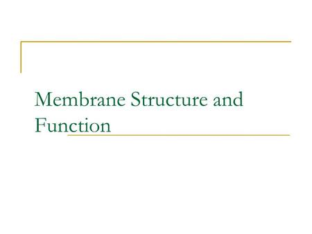 Membrane Structure and Function. Passive Transport.
