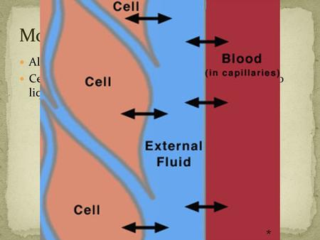 All organisms are made of cells Cells are mostly liquid. Surrounding the cells is also liquid. *