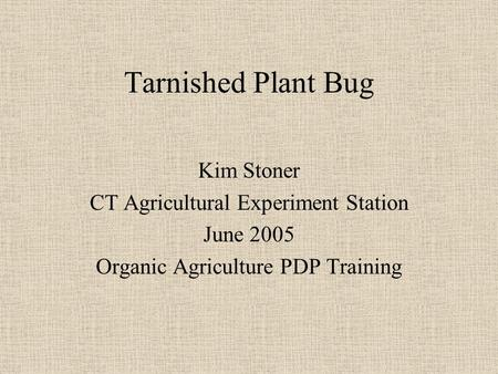 Tarnished Plant Bug Kim Stoner CT Agricultural Experiment Station June 2005 Organic Agriculture PDP Training.