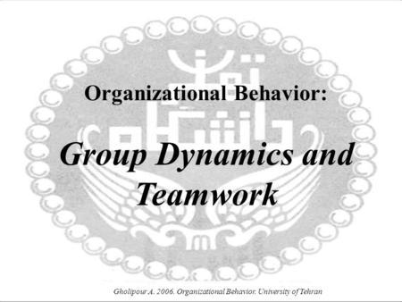 group dynamics organizational behavior pdf