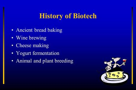 History of Biotech Ancient bread baking Wine brewing Cheese making Yogurt fermentation Animal and plant breeding.