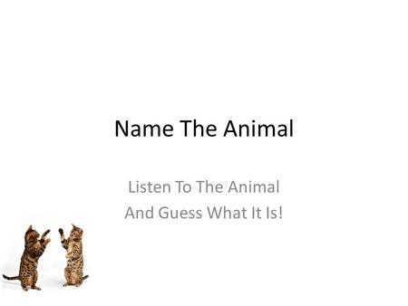 Free PowerPoint Quizzes Name The Animal Listen To The Animal And Guess What It Is!
