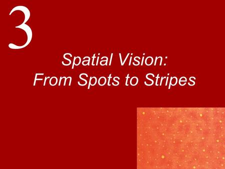 "3 Spatial Vision: From Spots to Stripes. Visual Acuity: Oh Say, Can You See? The King said, ""I haven't sent the two Messengers, either. They're both gone."