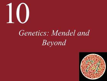 10 Genetics: Mendel <strong>and</strong> Beyond. 10.1 What Are the Mendelian Laws of Inheritance? People have been cross-breeding plants <strong>and</strong> animals for at least 5,000.