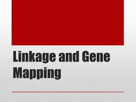 Linkage and Gene Mapping. Mendel's Laws: Chromosomes Locus = physical location of a gene on a chromosome Homologous pairs of chromosomes often contain.