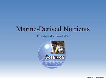 Marine-Derived Nutrients The Aquatic Food Web. Algal Blooms The North Pacific Turns Green.