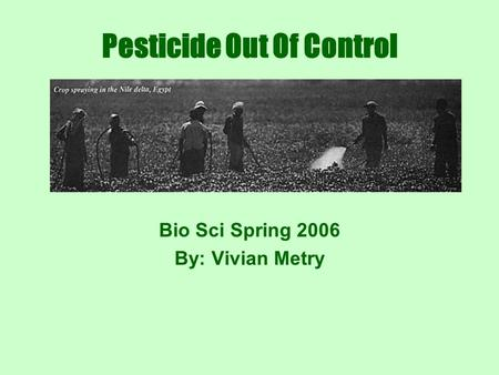 Pesticide Out Of Control Bio Sci Spring 2006 By: Vivian Metry.