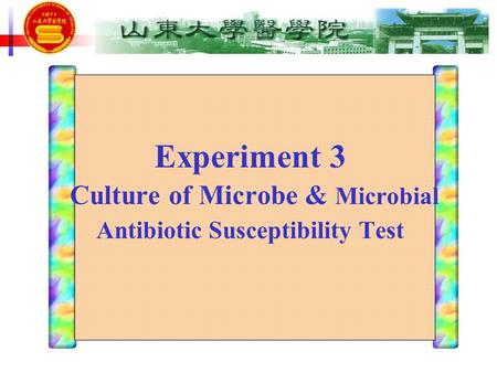 Experiment 3 Culture of Microbe & Microbial Antibiotic Susceptibility Test.