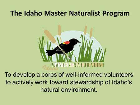 The Idaho Master Naturalist Program To develop a corps of well-informed volunteers to actively work toward stewardship of Idaho's natural environment.