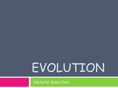 Evolution Natural Selection.